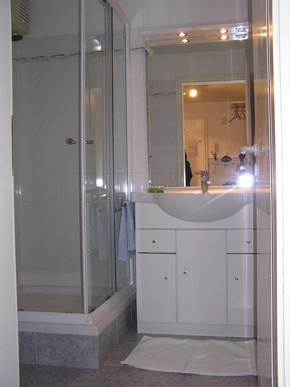 Das neu renovierte Duschbad