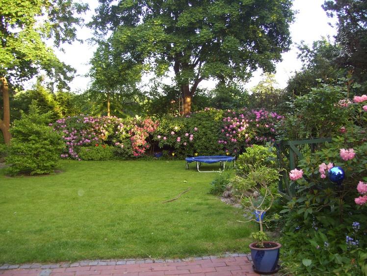 Der Garten mit Liegewiese von der Terasse aus