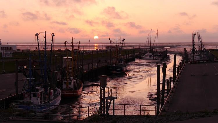 Kutterhafen am Abend
