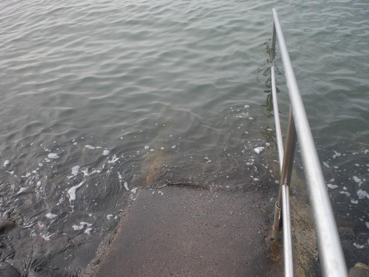 Das klare Nordseewasser
