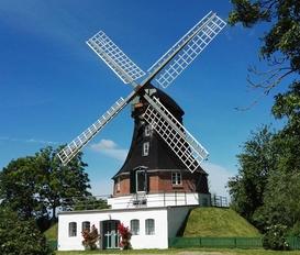 Mill Oldenswort