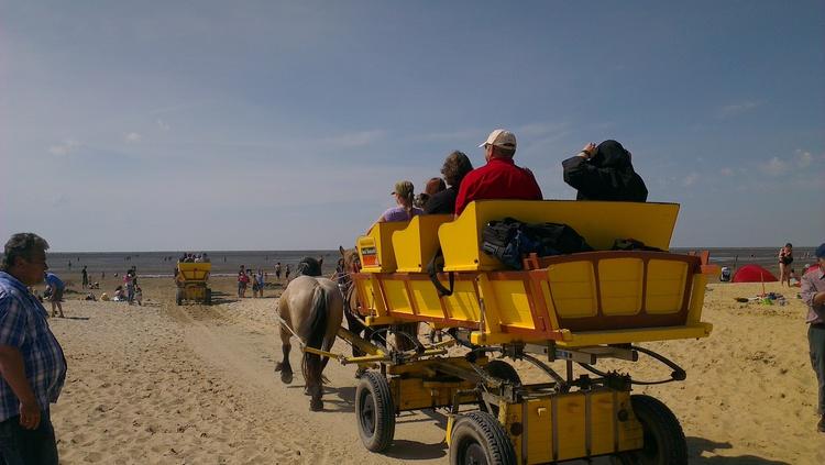 Wattwagen auf dem Weg zur Insel Neuwerk
